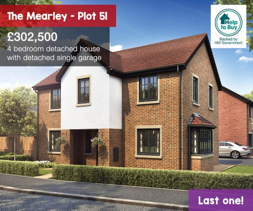 the mearley plot 51
