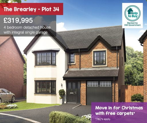 falcon rise, the brearley plot 34 christmas offer