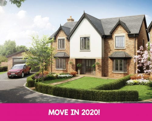the ackworth move in 2020