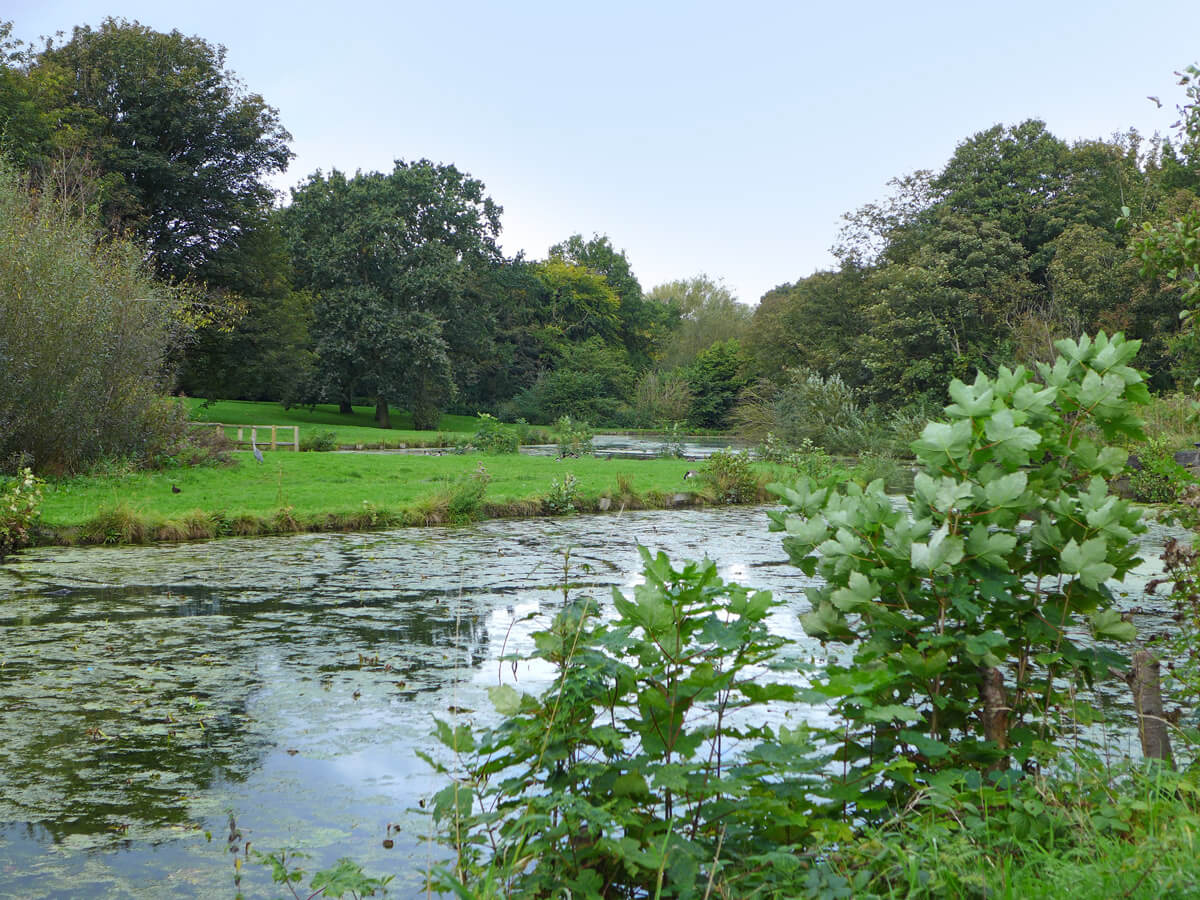 Local amenity - pond and park area
